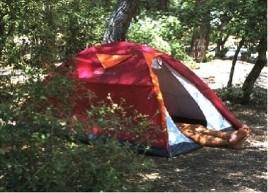 Le camping change de standing
