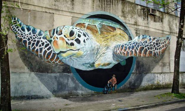 Découvrez le Street art et le graffiti